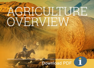 Agribusiness Overview