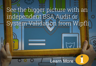 BSA Audit or System Validation