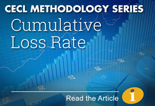 Click here to read our CECL Methodology Series article on Cumulative Loss Rate