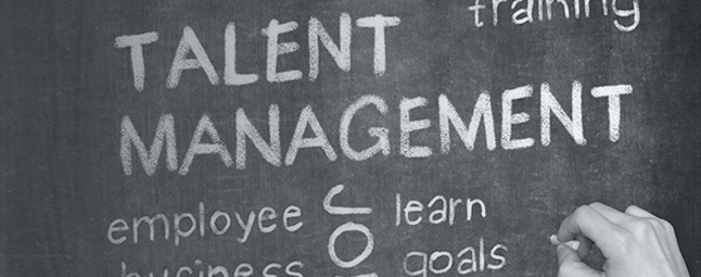 Talent Management Services