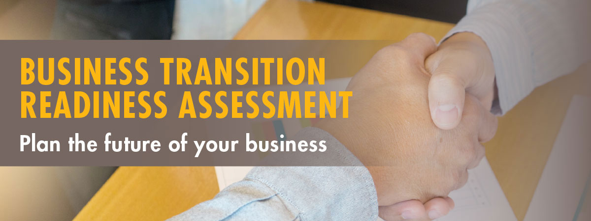 Business Transition Readiness Assessment