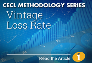 Click here to read our CECL Methodology Series article on Vintage Loss Rate