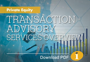 Private Equity Transaction Advisory Services