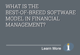 What is the Best-of-Breed Software Model in Financial Management?